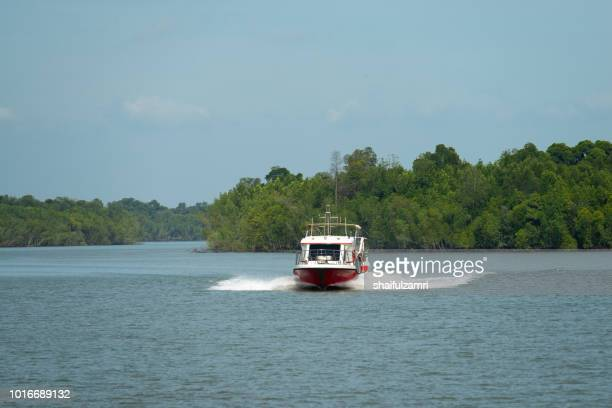 Passenger boat from Port Klang route to Pulau Ketam via mangrove trees, a shrub or small tree that grows in coastal saline or brackish water.