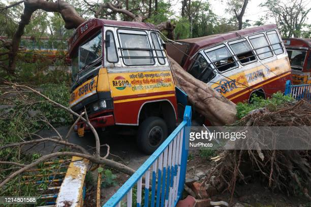 A Passenger bus damaged by a fallen tree due to Cyclone Amphan is seen in Kolkata West Bengal India on May 232020At least 106 people died in the...