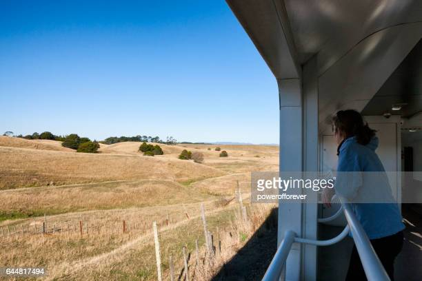 Passenger on train traveling through the rural landscape of New Zealand