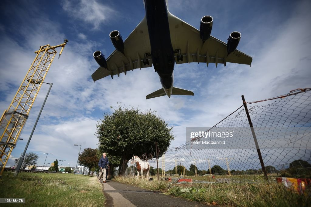 A passenger plane comes into land over a field containing horses at Heathrow Airport on August 11, 2014 in London, England. Heathrow is the busiest airport in the United Kingdom and the third busiest in the world. The airport's operator BAA wants to build a third runway to cope with increased demand.