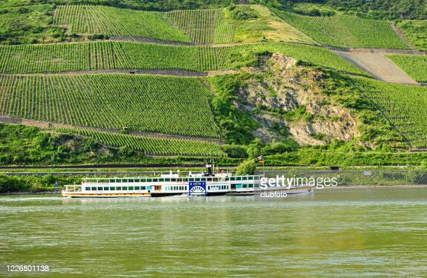goethe passenger ship sails along the river rhine, germany - passenger craft stock pictures, royalty-free photos & images