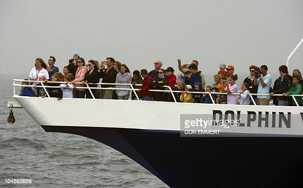 Passengers aboard the Dolphin VI whale watching boat August 5, 2010 off the shores of Provincetown, MA. Many vacationers spend their time watching...