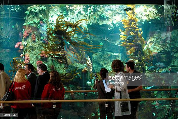 Passengers at Vancouver International Airport look at fish in an aquarium in the new International Terminal of the airport in Vancouver, British...