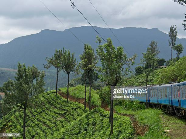 Passengers in the train journey from Kandy to Ella in the highlands of Sri Lanka