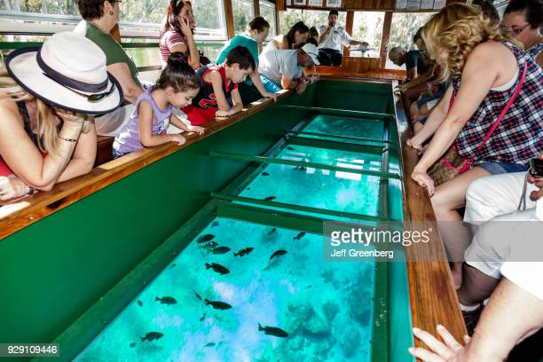 Passengers on a glass bottom boat looking at fish