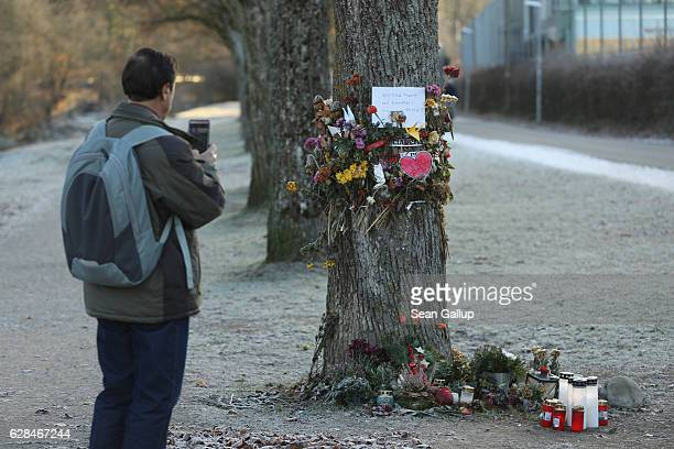 A passerby stops to photograph flowers and messages left by mourners that adorn a tree near the spot where Maria L a 19yearold medical student was...