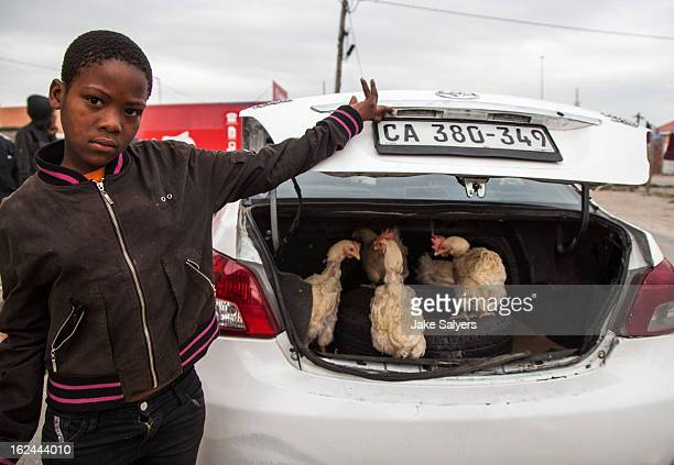 Passing this boy in the street, he offered to sell me chickens out of the trunk of a car.