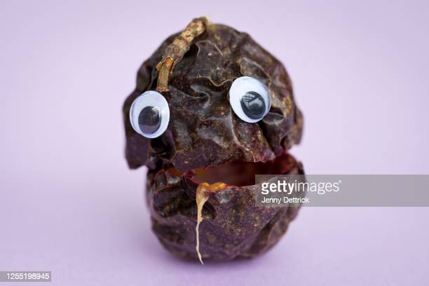 passion fruit face - googly eyes stock pictures, royalty-free photos & images