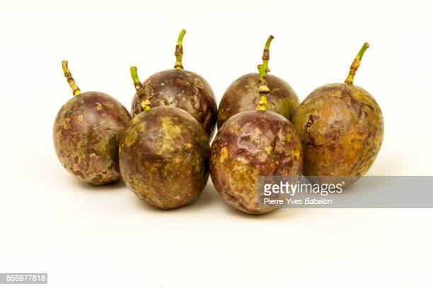passion fruit - pierre yves babelon stock pictures, royalty-free photos & images