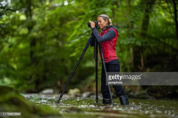 passion, passe-temps, profession, femme photographe travaillant à l'extérieur dans la rivière - professional occupation photos et images de collection