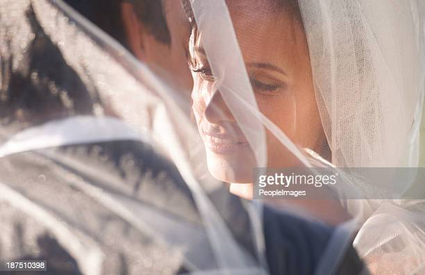passionate about each other - wedding veil stock photos and pictures
