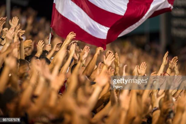 Passionate fans cheer and raise hands at a sporting event