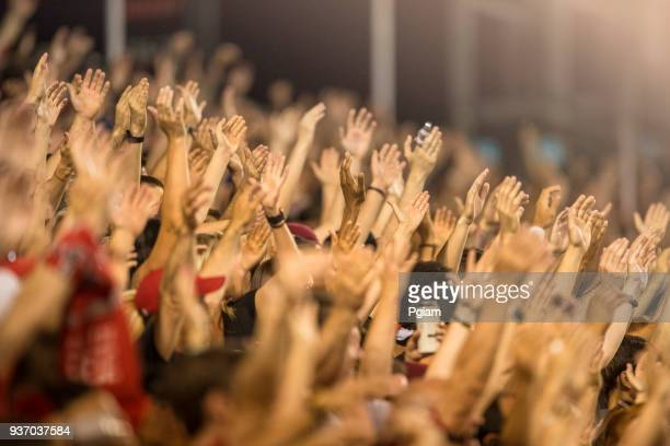 passionate fans cheer and raise hands at a sporting event - calcio sport foto e immagini stock