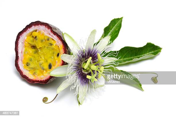 Passionfruit with flower