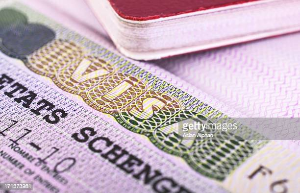 passport and visa - employment law stock photos and pictures