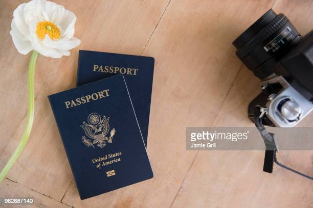 passport, flowers and camera on table - passeport photos et images de collection