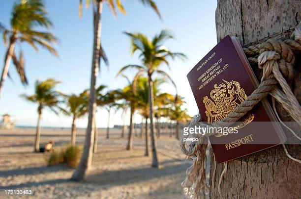 passport tied to tree
