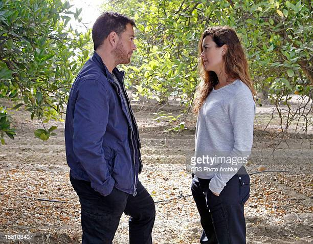Past Present Future Determined to locate Ziva Tony chases leads in Israel in search of her current whereabouts on NCIS Tuesday Oct 1 on the CBS...