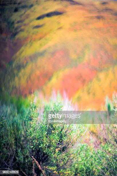 Pastel colored nature scene