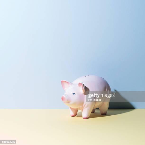Pastel piggy bank