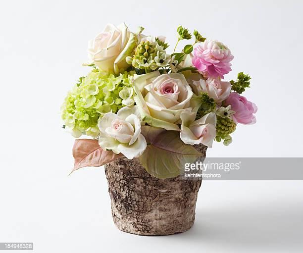 tons de rosa, buquê de flores - arranjo - fotografias e filmes do acervo