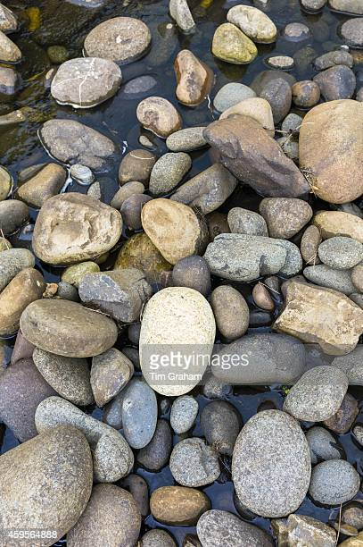 Pastel shades and various sizes of granite rocks and pebbles wet by sea water on beach Isle of Skye the Western Isles of Scotland UK