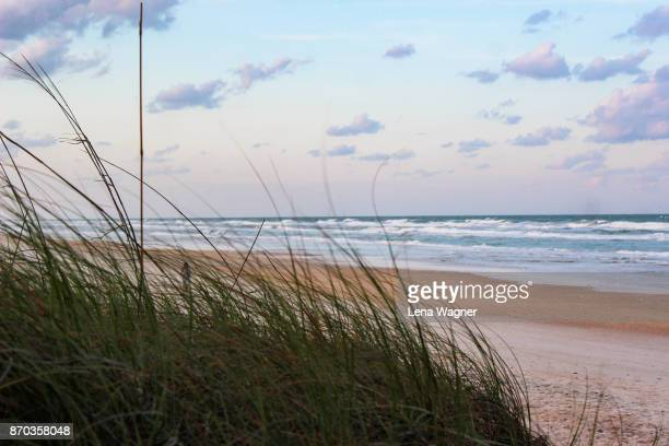 Pastel Sky Over Ocean Waves and Beach Grass