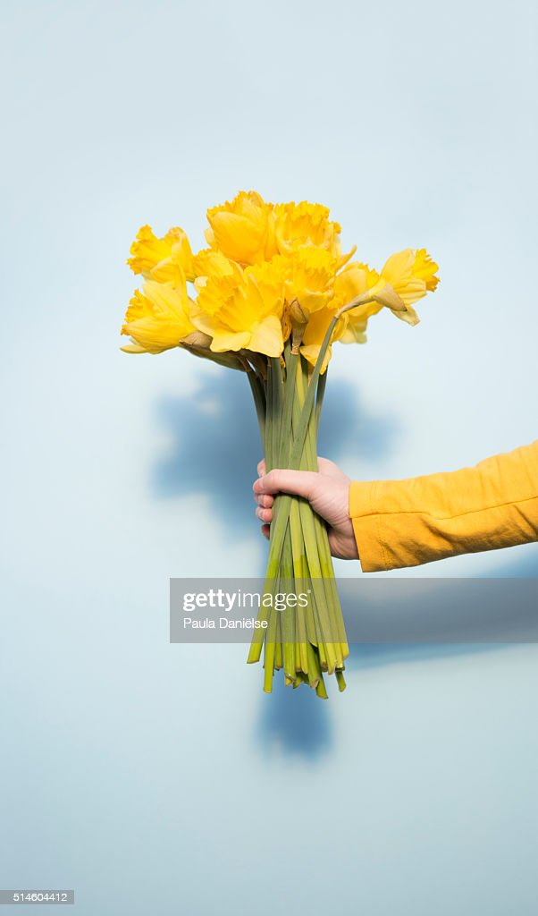 Pastel Spring : Stock Photo