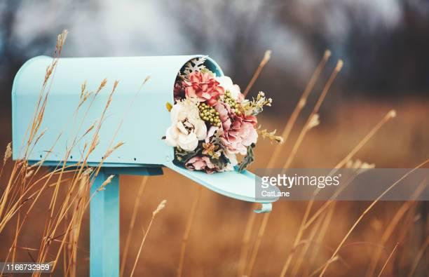 pastel teal mailbox met boeket van bloemen - valentines background stockfoto's en -beelden