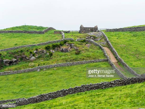 Pastoral landscape, green fields and plows for cultivation separated by stone walls. Terceira Island in the Azores islands, Portugal.
