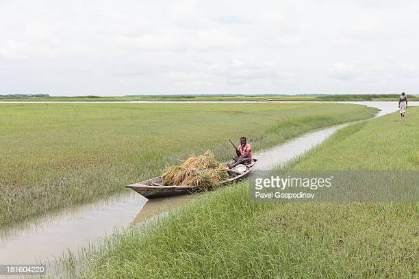 Pastoral scene - a boat loaded with hay sailing through a small canal in rural Bangladesh, Fishermen settlement near Chamdomban village, East Side of...