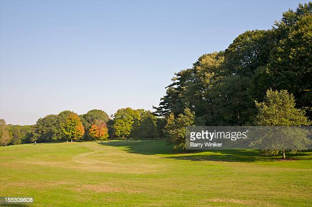 Pastoral view of lawn and trees in fall.