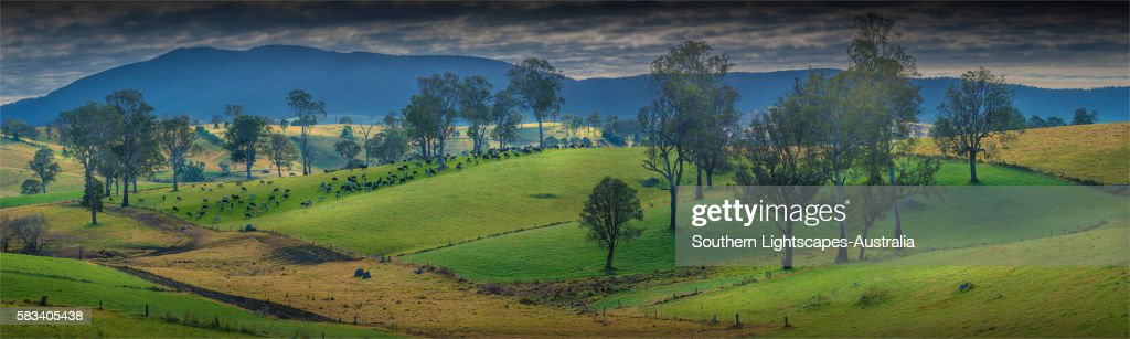 Pastural scenery just south of Cobargo, southern coastline of New South Wales, Australia. : Stock Photo