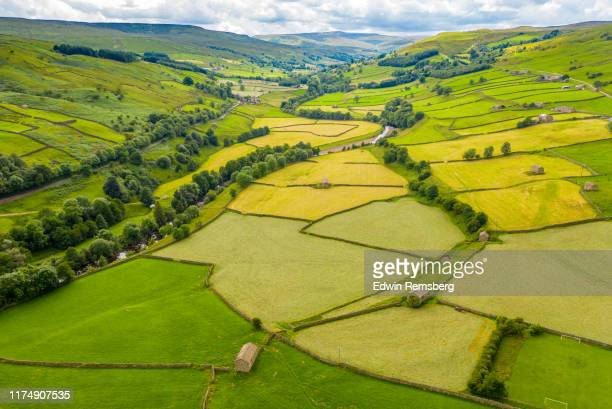 pastures and fences - field stock pictures, royalty-free photos & images