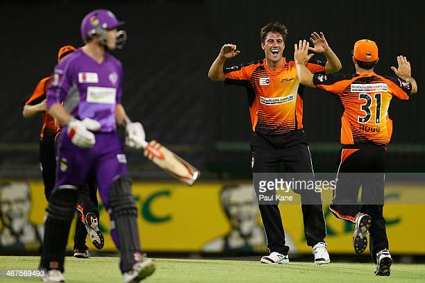 Pat Cummins and Brad Hogg of the Scorchers celebrate wthe wicket of George Bailey of the Hurricanes during the Big Bash League Final match between...