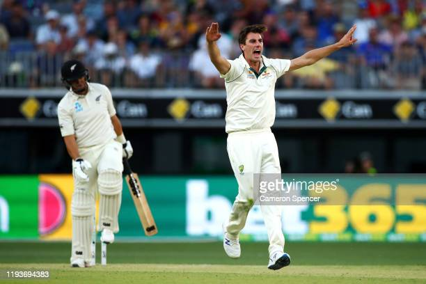 Pat Cummins of Australia appeals for lbw unsuccessfully during day two of the First Test match between Australia and New Zealand at Optus Stadium on...