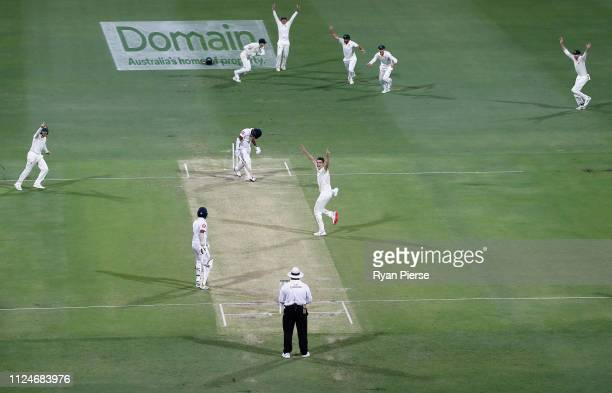 Pat Cummins of Australia celebrates after taking the wicket of Dimuth Karunaratne of Sri Lanka during day two of the First Test match between...