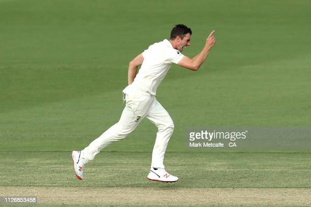 Pat Cummins of Australia celebrates taking the wicket of Kusal Mendis of Sri Lanka during day two of the Second Test match between Australia and Sri...