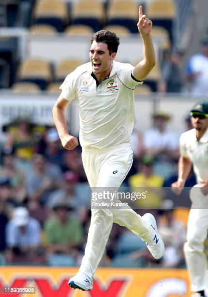 Pat Cummins of Australia celebrates taking the wicket of Muhammad Rizwan of Pakistan during day one of the 1st Domain Test between Australia and...