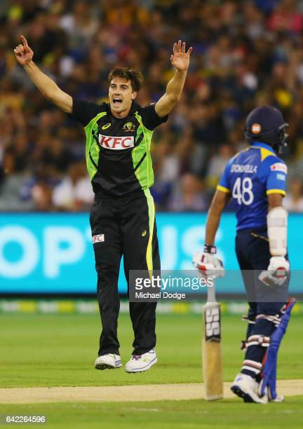 Pat Cummins of Australia celebrates the wicket of Uvula Tharanga of Sri Lanka walks out to bat during the first International Twenty20 match between...