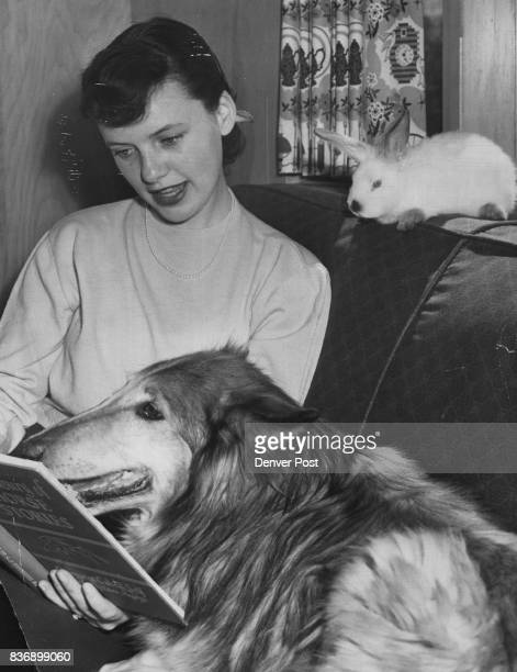 Pat Killian of 909 South Josephine street entertains her pets Lassie the collie and an unnamed Easter bunny which have teamed to be inseparable pals...