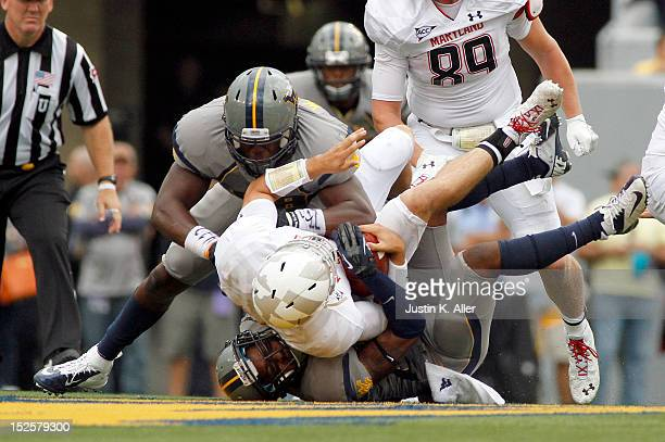 Pat Miller of the West Virginia Mountaineers sacks Perry Hills of the Maryland Terrapins during the game on September 22 2012 at Mountaineer Field in...