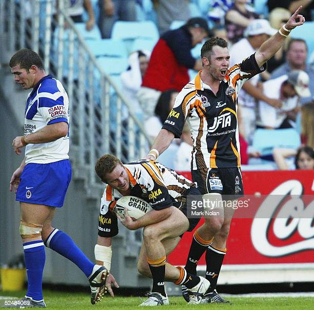 Pat Richards of the Tigers celebrates the try of John Wilson during the round three NRL match between the Bulldogs and Wests Tigers at Telstra...