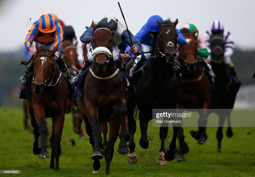 Pat Smullen riding Fascinating Rock (C, noseband) win The Qipco Champion Stakes at Ascot racecourse on October 17, 2015 in Ascot, England.