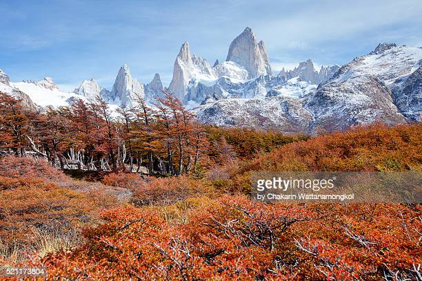 Patagonia in Autumn (Fitz Roy and Autumn Forest).