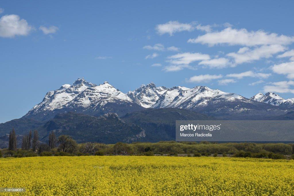 Patagonic landscape : Stock Photo