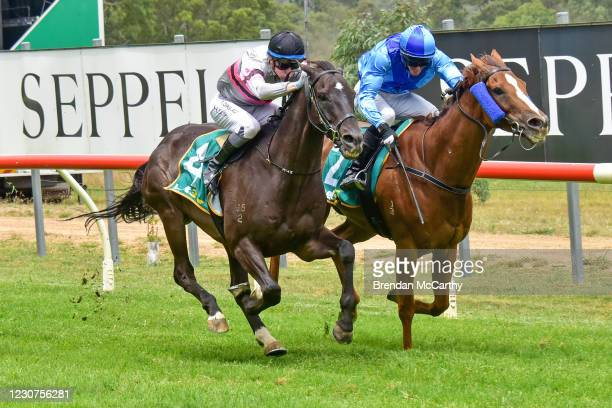 Patch Adams ridden by Harry Coffey wins the SEPPELT Great Western Cup at Great Western Racecourse on January 24, 2021 in Great Western, Australia.