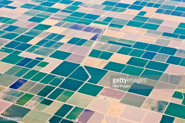 patchwork fields - patchwork stock pictures, royalty-free photos & images