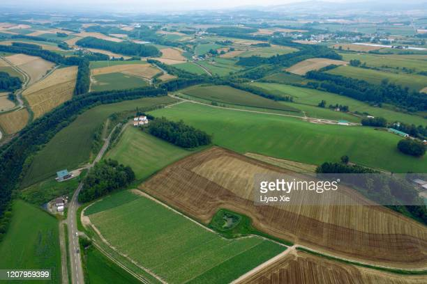 patchwork fields - liyao xie stock pictures, royalty-free photos & images
