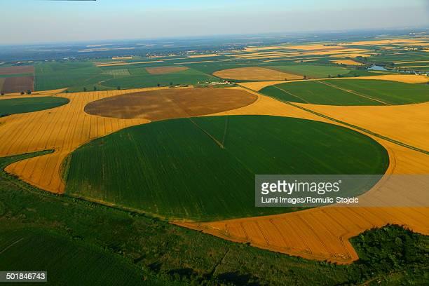 patchwork landscape, croatia, slavonia, europe - kornkreis stock-fotos und bilder